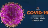 Ai là người được ưu tiên sử dụng vaccine COVID-19?