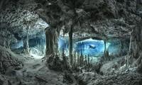 Hang động dưới nước có cảnh đẹp tuyệt trần.