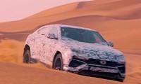 Tận thấy Lamborghini Urus chạy tít mù trên cát sa mạc