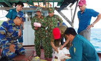 Phát hiện 20kg ma tuý trôi dạt trên đảo Thổ Chu