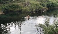 Lòng suối, nơi người dân Hóa Sơn phát hiện và vớt được hơn 6 tạ vàng