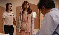 Cây Táo Nở Hoa tập 51: Hạnh trở về bên chồng, Báu trở mặt và quyết không hiến gan cứu Ngọc
