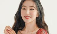 Xuất hiện một người hiếm hoi đứng về phía Irene (Red Velvet) giữa loạt bài tố lăng mạ
