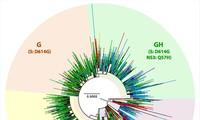 Biến thể mới của SARS-CoV-2 có khả năng lây nhiễm nhanh hơn.