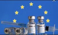 Châu Âu tăng tốc phê duyệt vắc xin COVID-19 ngừa biến thể mới