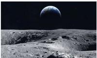 Các nhà khoa học muốn bảo tồn gene của các loài trên Trái đất lên Mặt trăng.