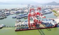 Thanh tra Chính phủ đã chỉ ra hàng loạt sai phạm khi cổ phần hóa cảng Quy Nhơn.