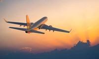 Tạm dừng cấp phép lập hãng hàng không mới tới năm 2022