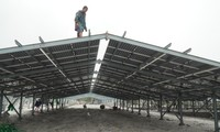 Kỳ lạ làm trang trại 'điện mặt trời' tại TT-Huế: Áp mái lên hàng loạt nhà... không mái