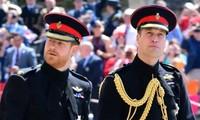 Harry sẽ về đứng bên William trong tang lễ Hoàng thân Philip, còn Kate và Meghan thì sao?