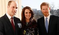 Hoàng tử Harry đã về đến nước Anh, đi thẳng tới nơi ở của William - Kate, lý do là gì vậy?