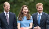 Vắng mặt Meghan, nhà William - Harry họp gia đình, mục đích là gì, William yêu cầu ra sao?