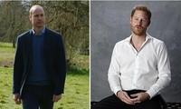 Hoàng gia Anh nhắc đến các thành viên tham gia chương trình mới, nhưng không ghi tên Harry