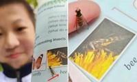 Nam sinh lớp 7 ở Trung Quốc nhận ra ảnh con ong trong sách giáo khoa thực ra là con ruồi