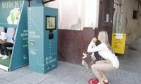 Squat 20 lần, người dân thành phố Cluj Napoca có ngay tấm vé sức khỏe đi xe buýt miễn phí