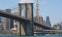 Ước mơ về cây cầu Brooklyn