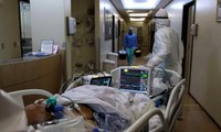 bệnh nhân covid 19