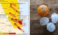 """9 cơn bão dữ dội cùng tấn công một khu vực ở Úc: Chuyên gia bảo """"chưa từng có tiền lệ"""""""