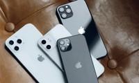 Nhận nhiệm vụ giao hàng nhưng shipper lấy luôn 14 chiếc iPhone 12, lại còn đem tặng bạn