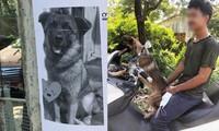 Chú chó đi lạc có cách cực thông minh để chủ tìm thấy mình, chủ cũng không tưởng tượng ra