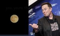 Vì sao tỷ phú Elon Musk lại khuyên chúng ta tăng độ sáng điện thoại để xem bức ảnh này?
