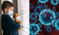 Vì sao biến thể SARS-CoV-2 mà nữ công nhân Hải Dương nhiễm dễ lây cho trẻ em hơn?