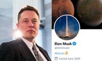 """Thế giới đang """"cuồng Elon"""": Elon Musk cứ nhắc đến tên công ty nào, công ty đó lập tức """"ăn nên làm ra"""""""