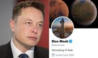 Tin vào tài khoản giả mạo tỷ phú Elon Musk, một người bị lừa mất trắng 13 tỷ đồng