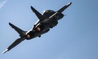 Một chiếc máy bay phản lực MiG-29. Ảnh: Sputnik