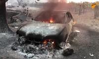 Cháy rừng lan rộng khắp California, nhiều nhà cửa, xe cộ đều bị thiêu rụi