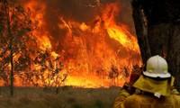 Ngọn lửa đã bùng cháy kéo dài hơn 1.000km từ Sydney đến Gold Coast gần Brisbane. Ảnh: Reuters