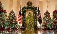 Nhà Trắng trang hoàng lộng lẫy đón Giáng sinh 2020