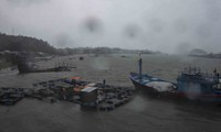 Tại các xã ven biển Quảng Ngãi mưa to và gió giật mạnh cấp 7 cấp 8 - ảnh L.V.C