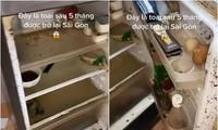 Trở lại thành phố sau 5 tháng, cô gái bất lực vì tủ lạnh bị ngắt điện, mém xỉu khi mở tủ