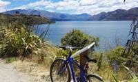 """Bài dự thi cuộc thi """"New Zealand - Bật mí trăm điều thú vị"""": Mùa Hè thiên đường ở Auckland"""
