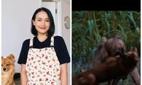"""Tại sao YouTuber Giang Ơi lại bất ngờ lên tiếng chỉ trích gay gắt phim """"Cậu Vàng""""?"""