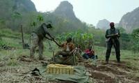 Phim Mỹ về chiến tranh Việt Nam có Ngô Thanh Vân đóng được vinh danh