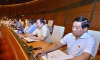 Quốc hội sẽ biểu quyết thông qua nhiều dự án luật vào tuần tới. Ảnh Như Ý