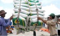 Phó Thủ tướng yêu cầu làm rõ vụ mở tờ khai xuất khẩu gạo nửa đêm của Hải quan