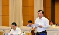 Bộ trưởng Tài chính Đinh Tiến Dũng tại phiên họp