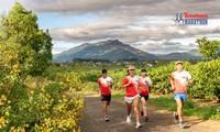 Công bố cung đường chạy Tiền Phong Marathon 2021