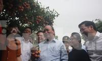 Thủ tướng Nguyễn Xuân Phúc thăm và động viên người trồng vải thiều ở huyện Lục Ngạn (Bắc Giang)