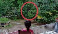 Hình ảnh xúc động: Chiến sĩ công an đi chống dịch, tạt qua nhà chỉ dám đứng từ xa nhìn con