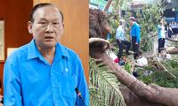 Vụ cây đổ trong trường khiến học sinh tử vong: Hiệu trưởng THCS Bạch Đằng nhận trách nhiệm