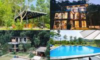"""Tha hồ """"sống ảo"""" ở villa nhà kính giữa rừng thông cách trung tâm Hà Nội 1 tiếng chạy xe!"""