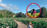 """Ngỡ ngàng hồ sen nở rộ giữa Thu ở Hang Múa (Ninh Bình), giới trẻ tha hồ chụp ảnh """"sống ảo"""""""