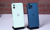 Thị trường iPhone 12, iPhone 12 Pro xách tay ảm đạm: Giá giảm sâu tận 6 triệu đồng