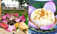 Sen Hang Múa (Ninh Bình) không chỉ đẹp mà còn gây sốt với trà, ẩm thực giữa trời Đông