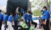 """Tuổi trẻ Bắc Ninh chung tay """"giải cứu"""" gần 6 tấn nông sản cho bà con Hải Dương"""