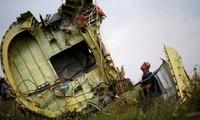 Xác máy bay MH17. Ảnh: Reuters